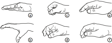Data Miming: Hand postures observed in the study