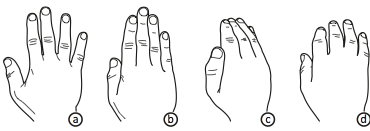Data Miming: Hand poses and corresponding meanings